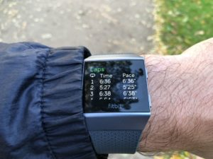 Fitbit Ionic Summary