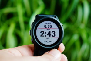 Garmin Forerunner 745: Data Page